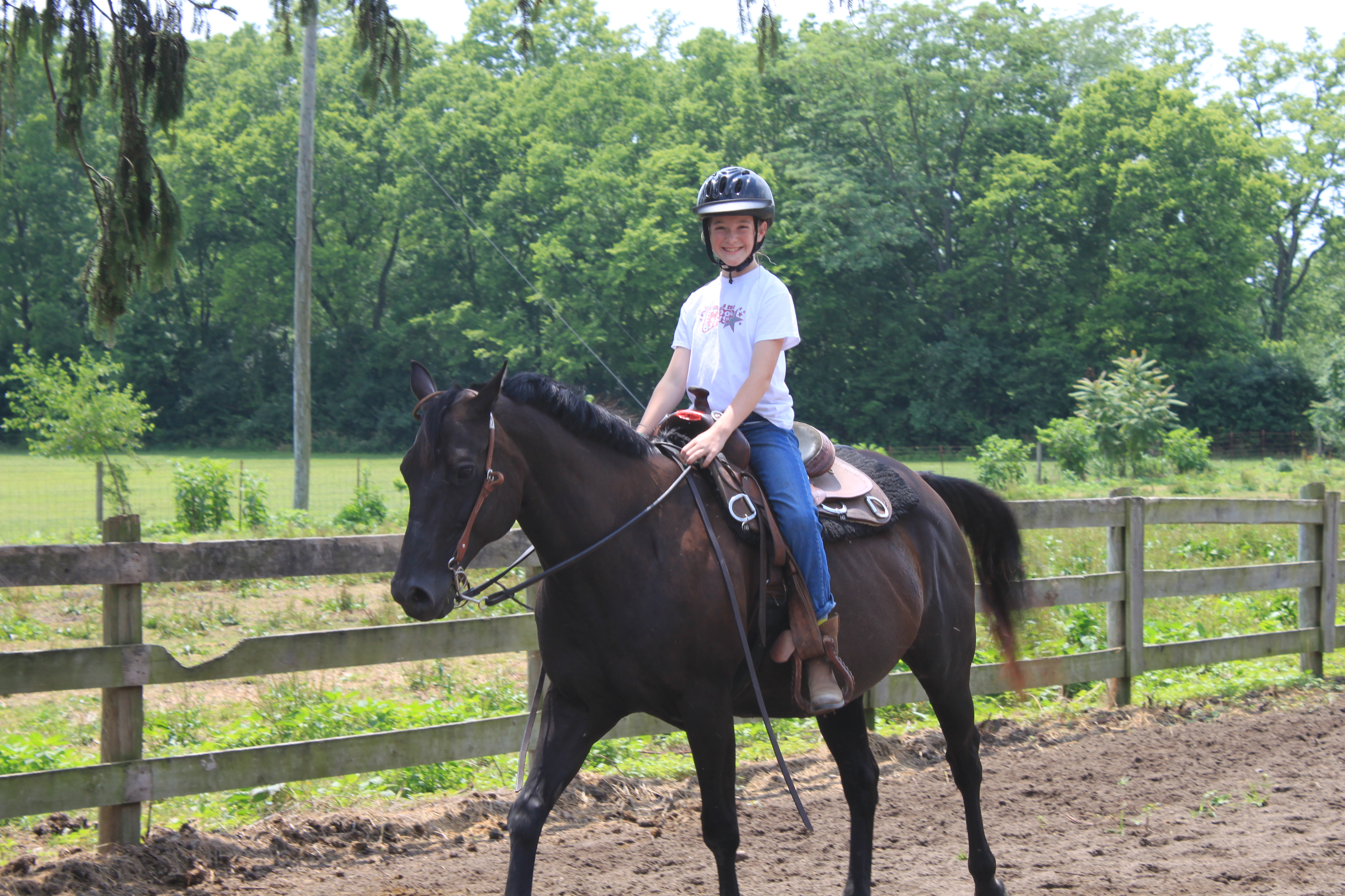 Highlights From Summer Camp Miami University Equestrian