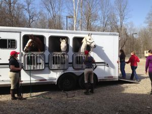 The Otterbein horses arrived Friday afternoon.