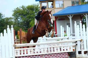 Thor dabbles in the Equitation