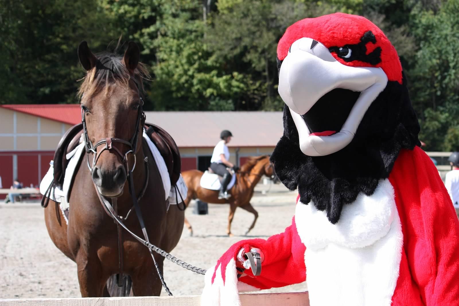 Spring 2017 Team Calendar Miami University Equestrian